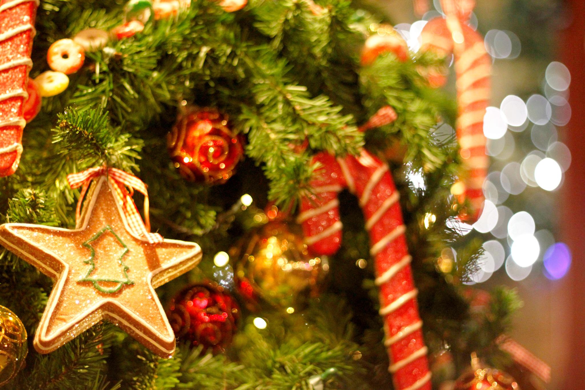 【おたすけ便での輸入事例】上海→大阪へクリスマス用品の輸入